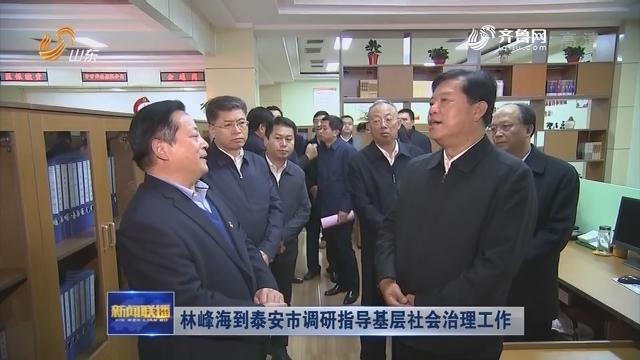 林峰海到泰安市调研指导基层社会治理工作