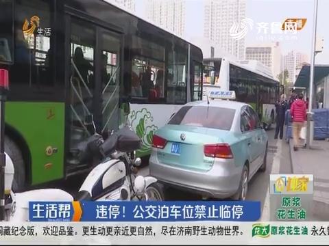 青岛:违停!公交泊车位禁止临停
