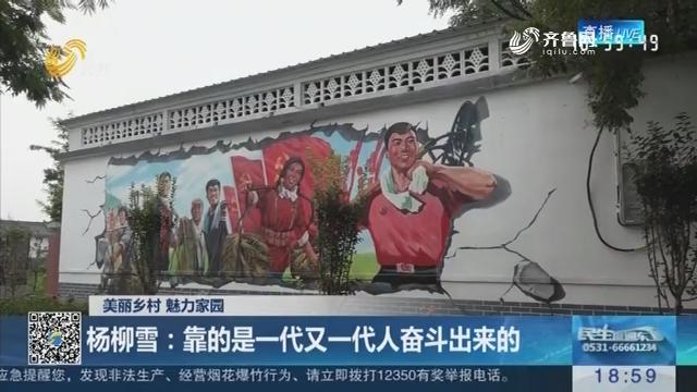 【美丽乡村 魅力家园】杨柳雪:靠的是一代又一代人奋斗出来的