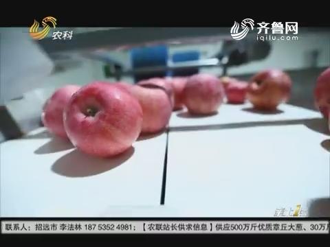 """给苹果做""""CT"""""""