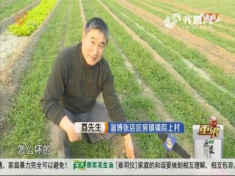 """【重磅】淄博:着急!地里""""小农水""""管道坏了"""