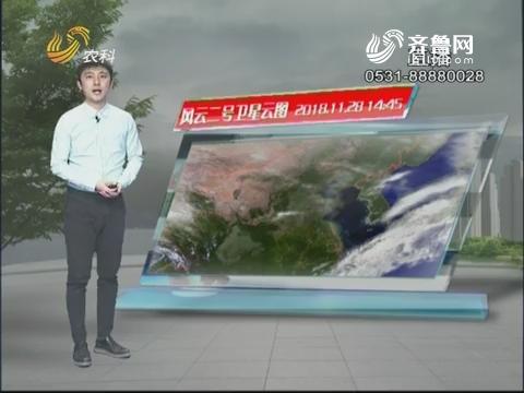 看天气:未来三天我省云量较多 最高气温不超15度