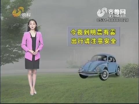 看天气:今夜到明晨有雾 出行请注意安全