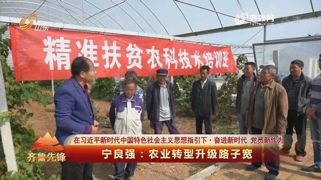 20181129《齐鲁先锋》:在习近平新时代中国特色社会主义思想指引下·奋进新时代 党员新作为 宁良强——农业转型升级路子宽
