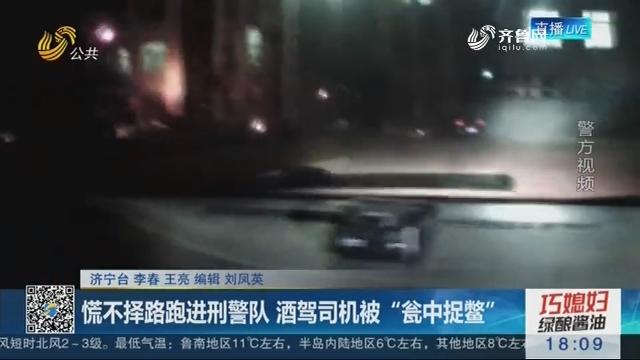 """济宁:慌不择路跑进刑警队 酒驾司机被""""瓮中捉鳖"""""""