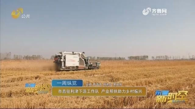 【一周纵览】市直驻利津下派工作队 产业帮扶助力乡村振兴