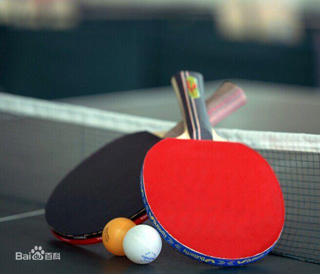 龙口小学生乒乓球比赛开赛