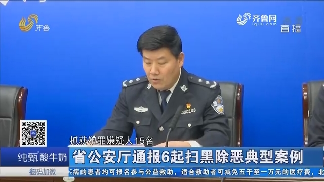 山东省公安厅通报6起扫黑除恶典型案例