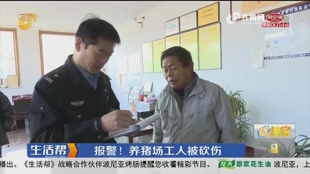 潍坊:报警!养猪场工人被砍伤