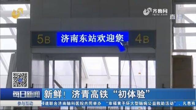 """新鲜!济青高铁""""初体验"""""""