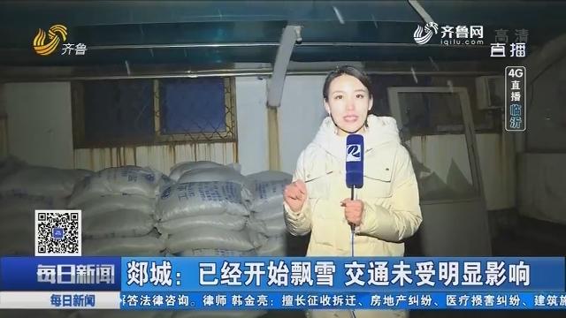 【4G直播】郯城:已经开始飘雪 交通未受明显影响