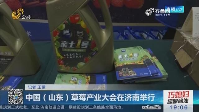 中国(山东)草莓产业大会在济南举行