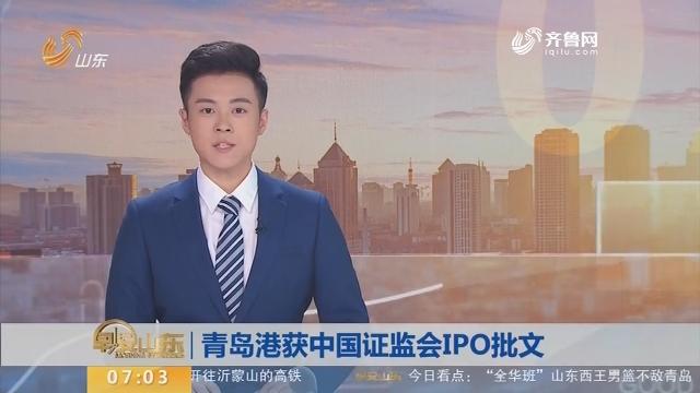 青岛港获中国证监会IPO批文