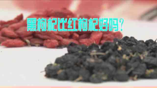 《生活大求真》:黑枸杞与红枸杞有什么区别?吃哪一个比较好?看完你就明白了!