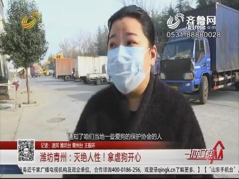 潍坊青州:灭尽兽性!拿虐狗高兴