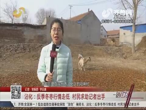 沾化:反季冬枣行情走低 村民求助记者出手