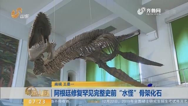 """阿根廷修复罕见完整史前""""水怪""""骨架化石"""