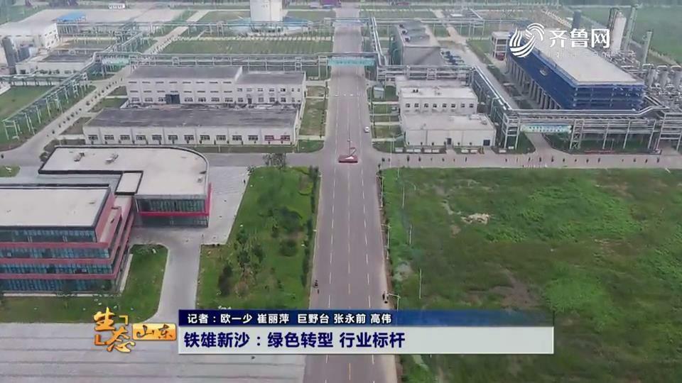 铁雄新沙:绿色转型 行业标杆