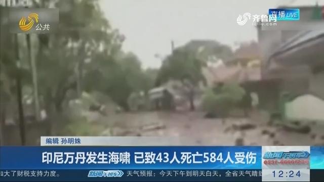 印尼万丹发生海啸 已致43人死亡584人受伤