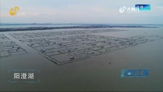 """山东超级工程:强国""""质""""链"""