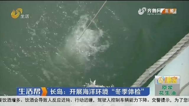 """长岛:开展海洋环境""""冬季体检"""""""