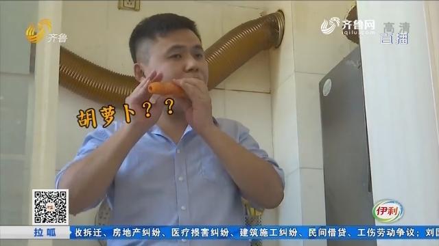 东营:别人萝卜用来吃 他家萝卜用来吹