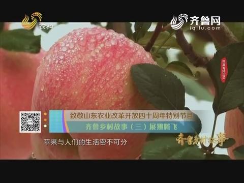 致敬山东农业改革开放四十周年特别节目 齐鲁乡村故事(三)展翅腾飞
