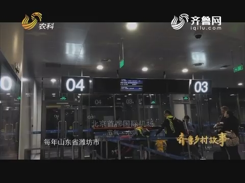 致敬山东农业改革开放四十周年特别节目 齐鲁乡村故事(四)四海弄潮