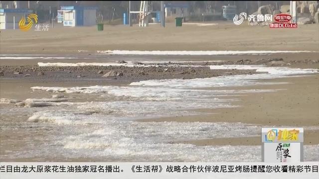 青岛:冻人!冷空气来袭 海边结冰