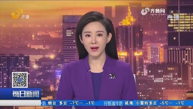 """青岛啤酒""""金猪迎春 福到万家""""12月30日在淄博举行"""