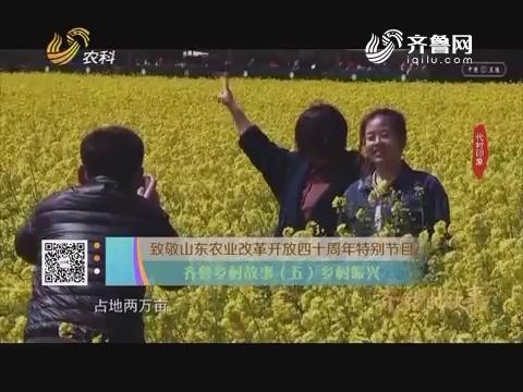 致敬山东农业改革开放四十周年特别节目 齐鲁乡村故事(五)乡村振兴