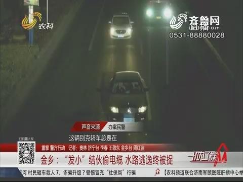 """【重拳 警方行动】金乡:""""发小""""结伙偷电缆 水路逃逸终被捉"""