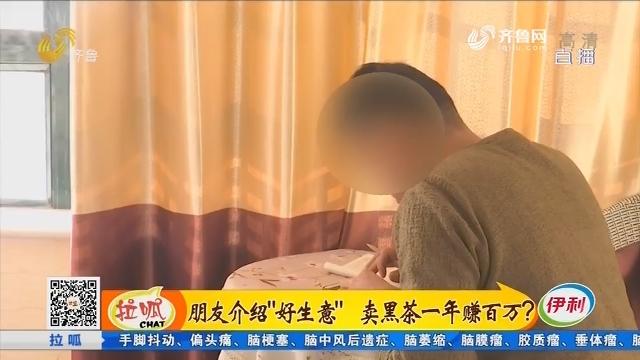 """茌平:朋友介绍""""好生意"""" 卖黑茶一年赚百万?"""