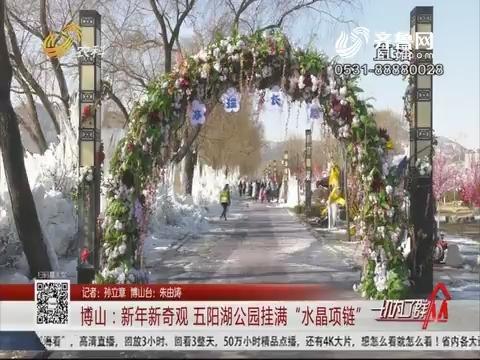 """博山:新年新奇观 五阳湖公园挂满""""水晶项链"""""""