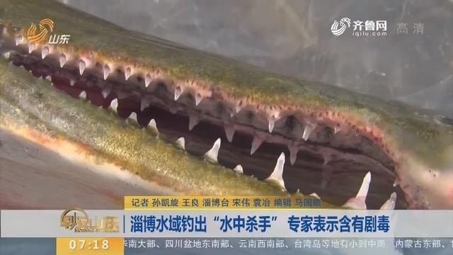 """【闪电新闻排行榜】淄博水域钓出""""水中杀手"""" 专家表示含有剧毒"""