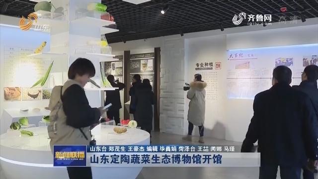 山东定陶蔬菜生态博物馆开馆