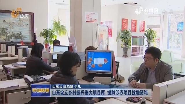 山东设立乡村振兴重大项目库 缓解涉农项目投融资难