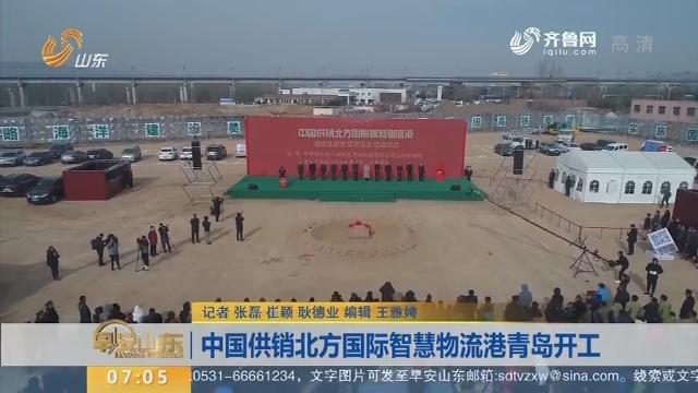 中国供销北方国际智慧物流港青岛开工