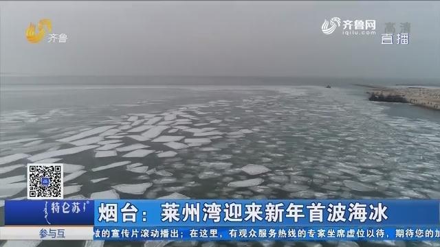 烟台:莱州湾迎来新年首波海冰