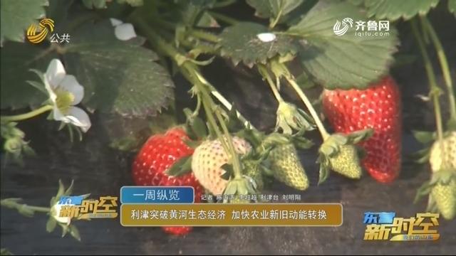 利津突破黄河生态经济 加快农业新旧动能转换