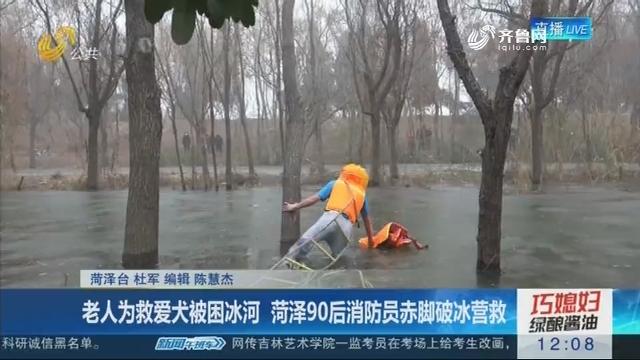 老人为救爱犬被困冰河 菏泽90后消防员赤脚破冰营救