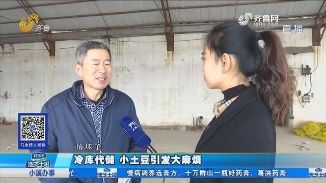 齐河:冷库代储 小土豆引发大贫苦