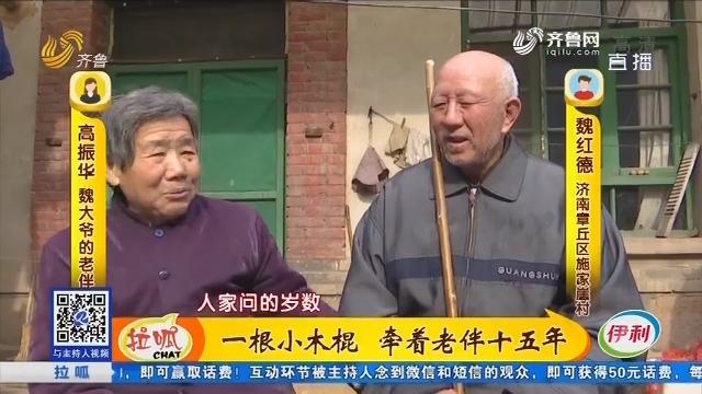 济南:一根小木棍 牵着老伴十五年