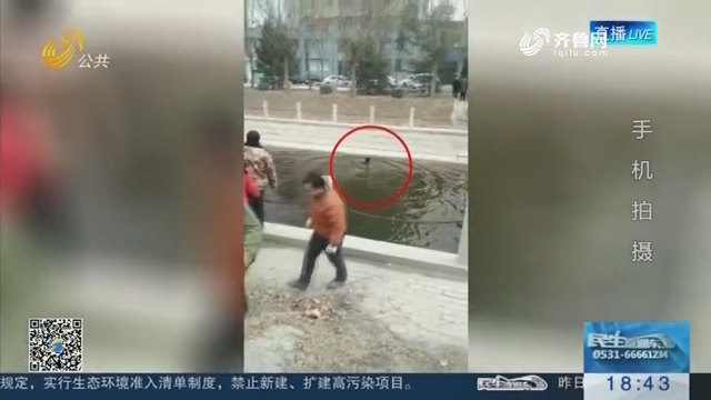 聊城一7岁男孩坠河 滴滴司机秒脱衣服跳冰河救人