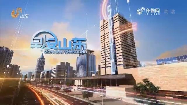 2019年01月20日早安山东完整版