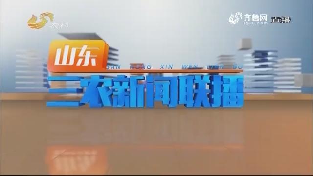 2019年01月20日《山东三农新闻联播》完整版