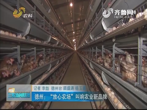 """【走齐鲁 看样板】德州:""""放心农场"""" 叫响农业新品牌"""