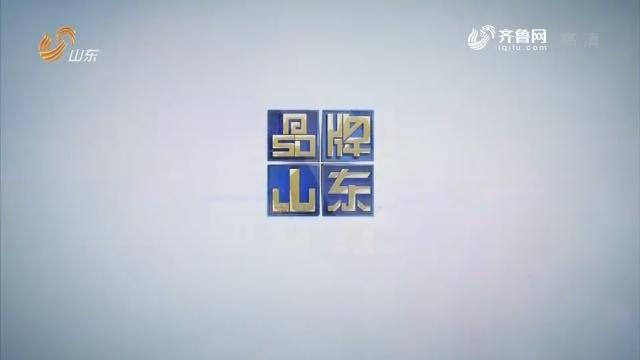 2019年01月21日《品牌山东》完整版