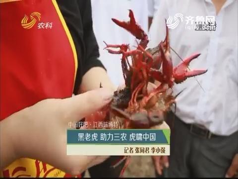 【中国好肥·江西瑞博特】黑老虎 助力三农 虎啸中国