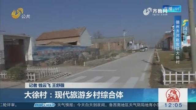 【闪电连线】打造美丽村居——大徐村:现代旅游乡村综合体